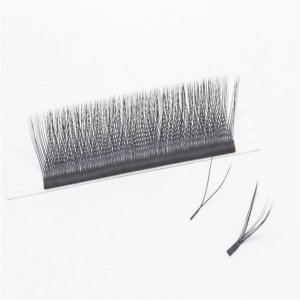 YY Eyelash Extension